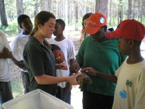 4-H youth learn about the habitat and calm nature of the Gopher Tortoise