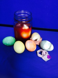 Dying eggs with natural materials is a fun 4-H club activity that teaches a little science too!