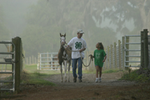 4-H horse volunteers are dedicated to helping youth learn lifelong leadership and horsemanship skills.