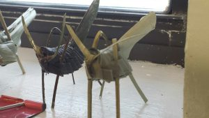 Nate's palmetto-leaf grasshoppers are a popular camp craft.