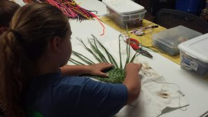 Nate teaches youth to use palmetto branches to weave fans, baskets and even 3-dimensional insect models.