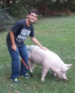 "This is Peyton's first year in the swine project. He is a Jackson County 4-Her. ""I practice with my pig everyday!"""