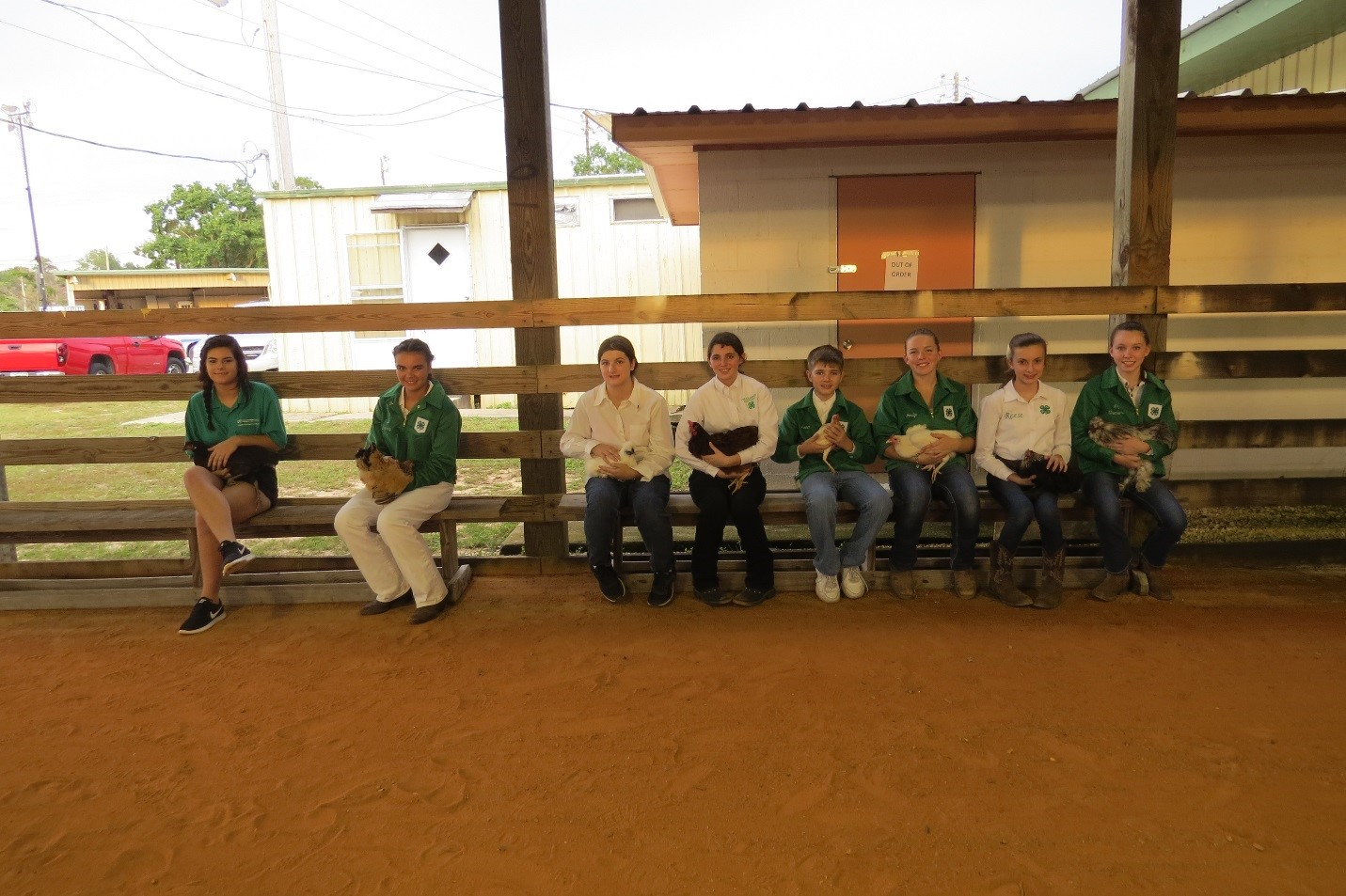 4-h poultry showmanship & fitting crawford county fair.