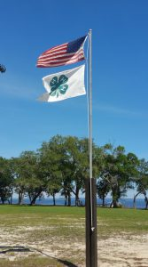 4-H Flag raised