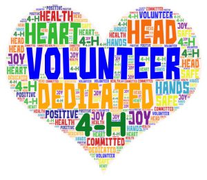 A picture of a heart full of descriptive words about volunteering