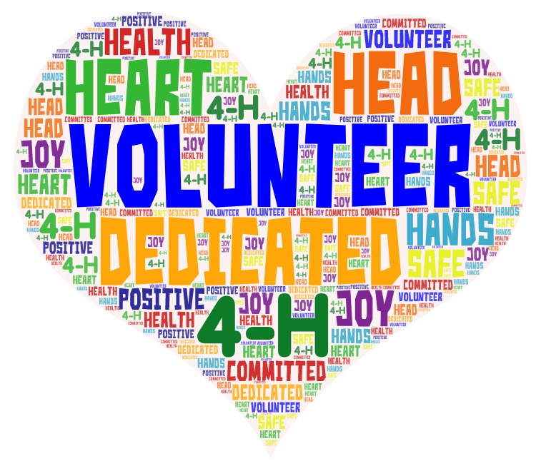 Reap the Benefits of Becoming a 4-H Volunteer