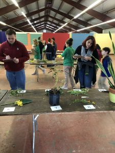 Youth judge plants and record answers on clipboards