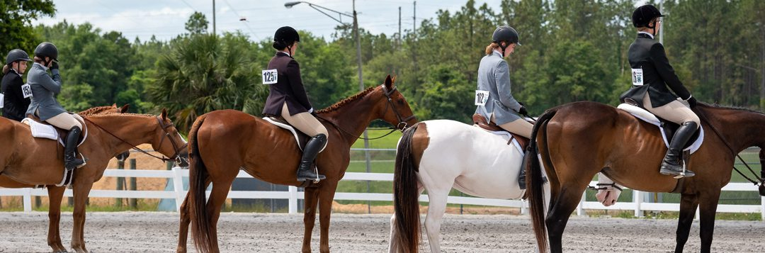 Now is the Time To Get Involved in the Florida 4-H Horse Program