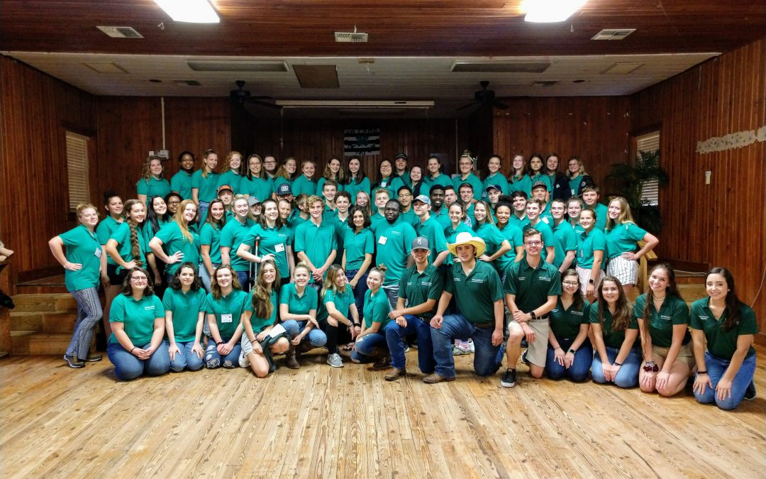 What Exactly is FL 4-H State Executive Board?