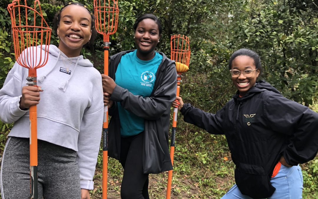 Service Learning Versus Community Service