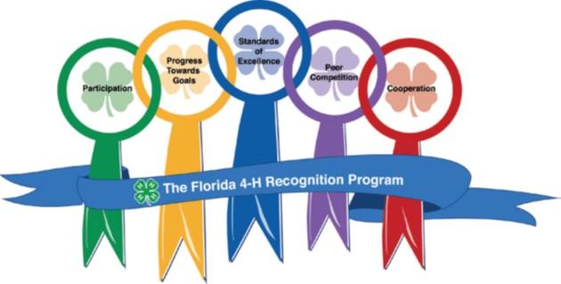Volunteer Leadership Academy: Awards & Recognition