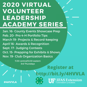 Green flyer with white text explaining the Virtual Volunteer Leadership Academy