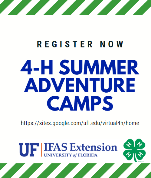 Summer Just Isn't Summer Without 4-H Camp