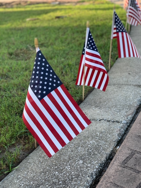 American Flags along a curb