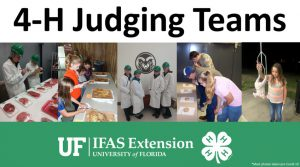 4-H Judging Teams