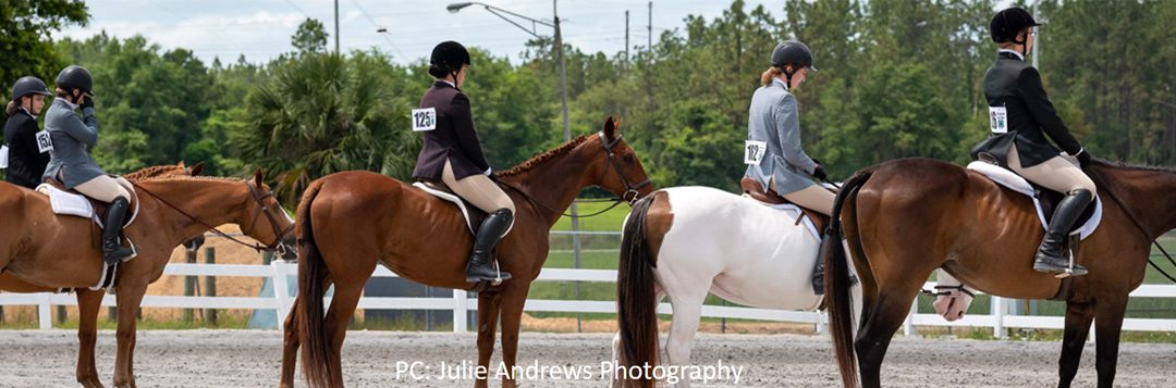 It's a New Year in the Florida 4-H Horse Program
