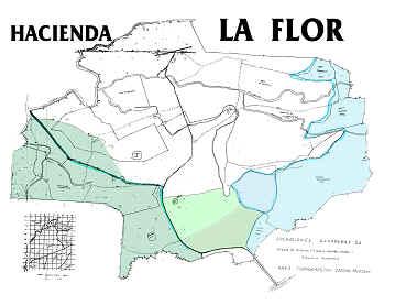 Maps.h2
