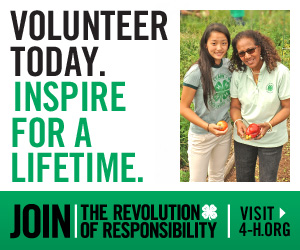 Volunteer Recruitment Web Banner