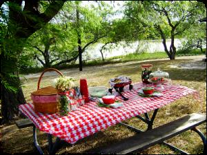 picnic picture