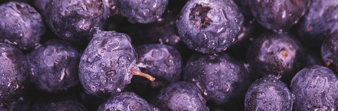 Produce Pointers – Blueberries