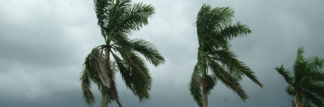 Preparing for the Storm – Home Safe Home