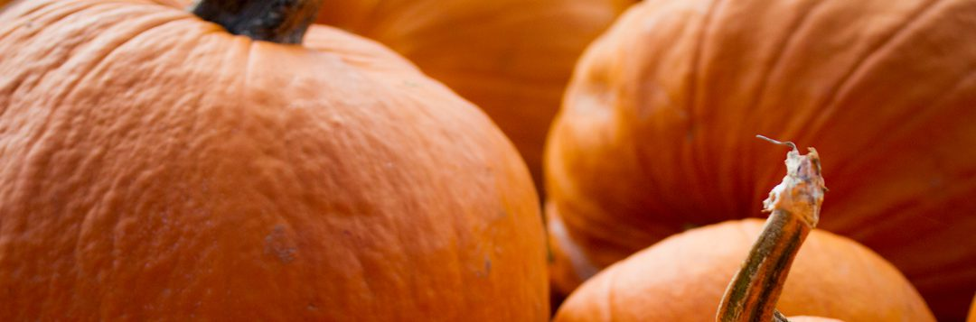 Produce Pointers – Pumpkins