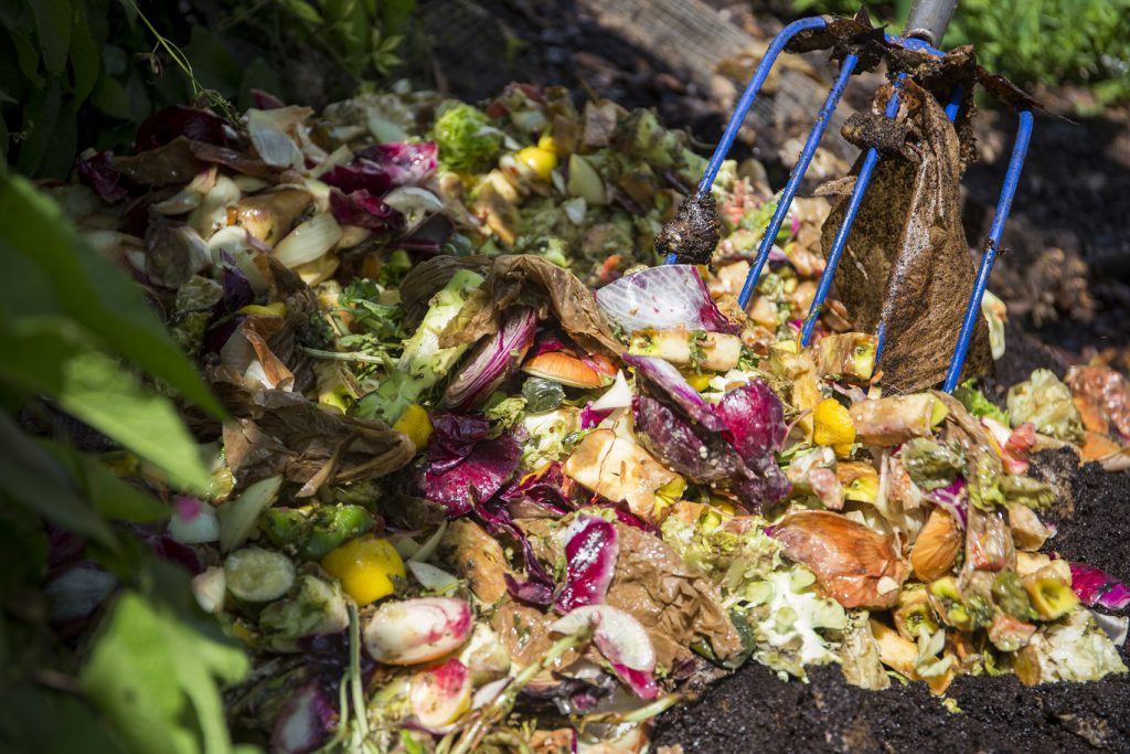 close-up of a compost pile