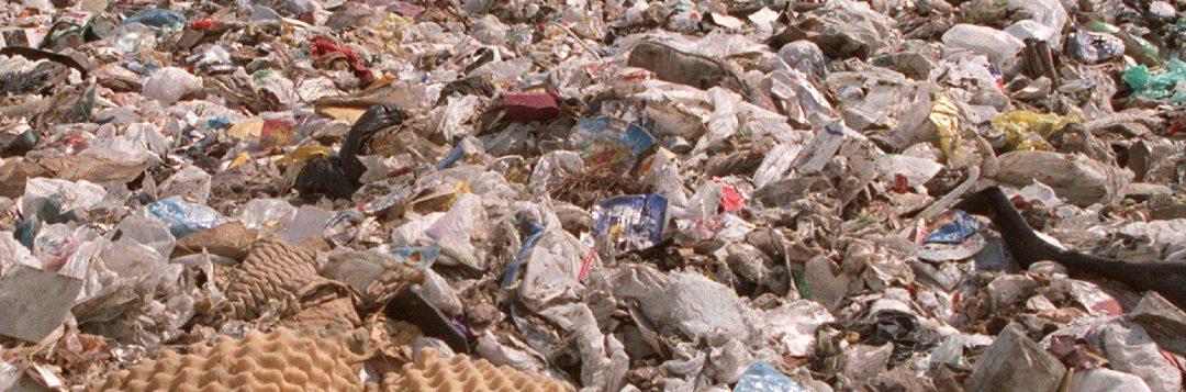 Edible Garbage