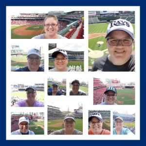 collage of different baseball parks