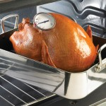 thermometer_in_turkey_in_pan