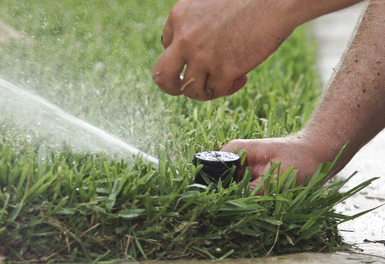 Sprinkler System check up