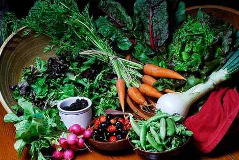 Preparing Your Vegetable Garden