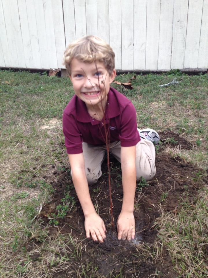 Start the Year Off Right — Plant a Tree!
