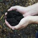 Organic Gardening Starts With The Soil