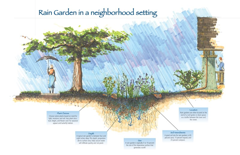 rain gardens offer option for problem areas of yard diagram of a raised garden beds