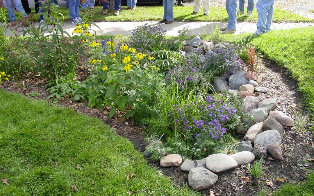 Rain Garden Gardening In The Panhandle