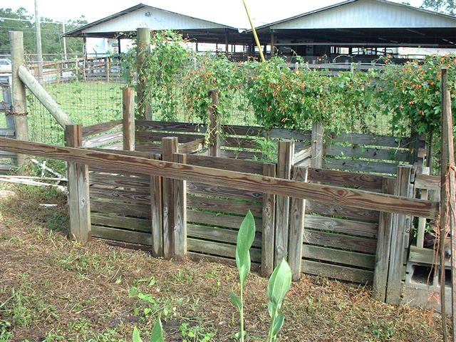 adf00efe0fbf4 Understanding the Greens and Browns of Compost | Gardening in the ...