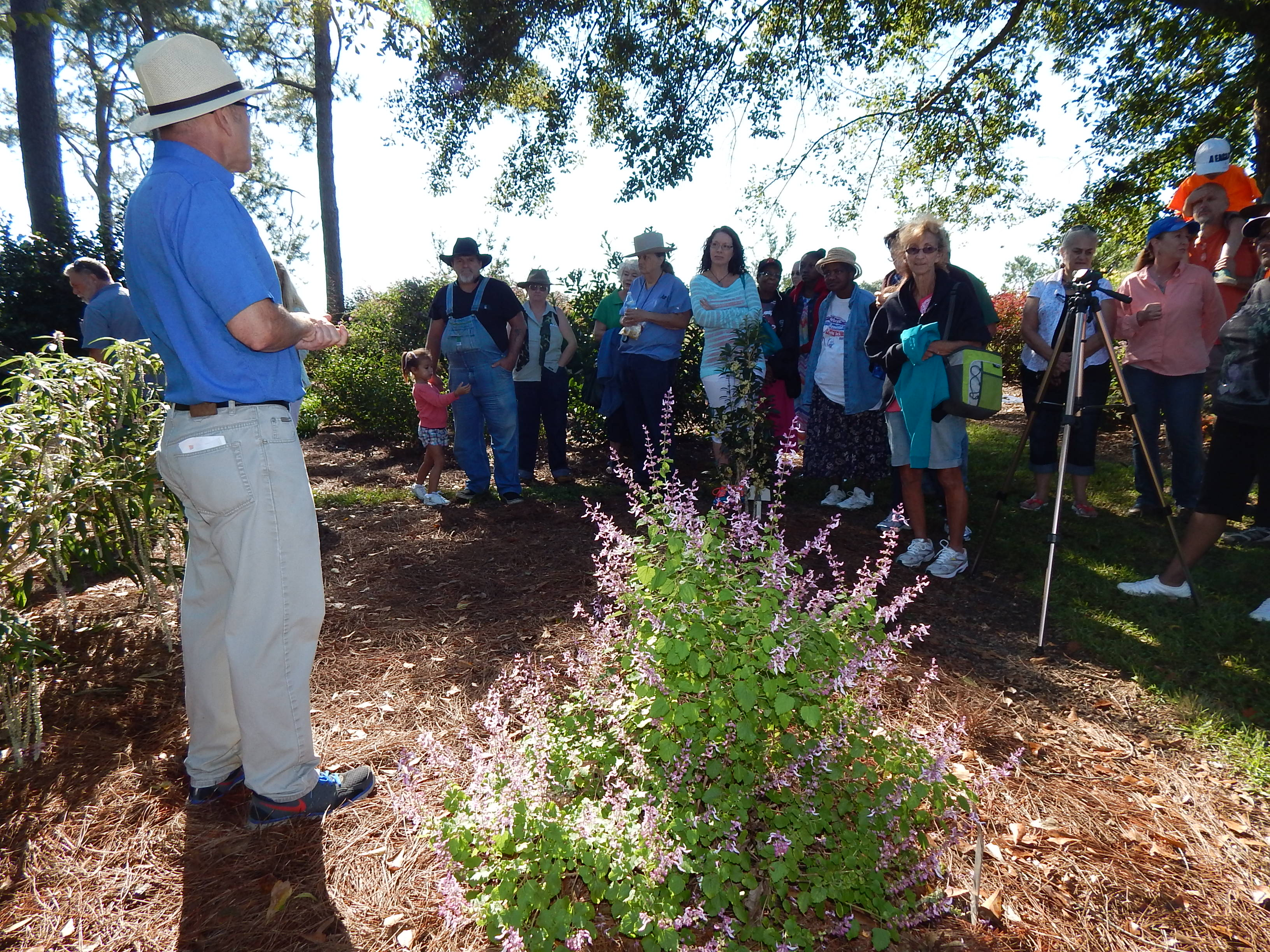 """Art and Plants Come Together at the """"Art & Garden Fall Family Festival"""""""