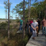 Florida Master Naturalist Courses Provide Unique Perspective into Natural World