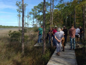 Master Naturalist Jerry Patee leads classmates along his project: a wetland boardwalk in Perdido Key. Photo credit: Carrie Stevenson