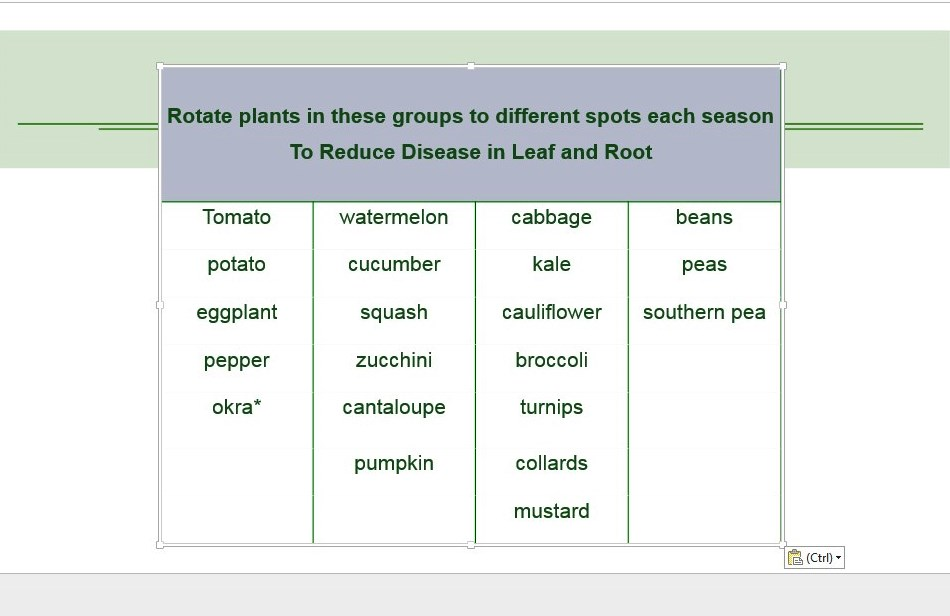 * okra is not a member of the solanaceae, but may be included as part of the solanaceae rotation