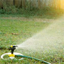 Watering to establish lawn
