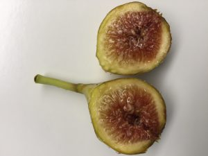 The insides of a fig show the small flowering structures that form the larger fruit. Photo credit: Carrie Stevenson