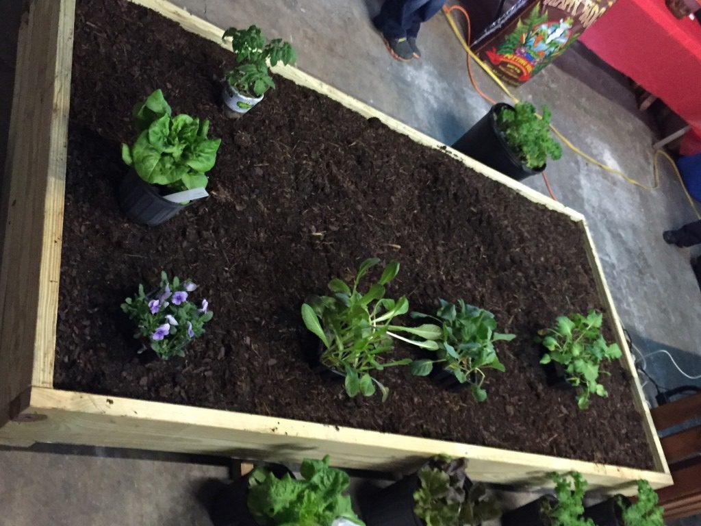 Enabling Technique for Raised Bed Gardens