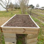 Readying Your Raised Beds for Northwest Florida's Best Gardening Season