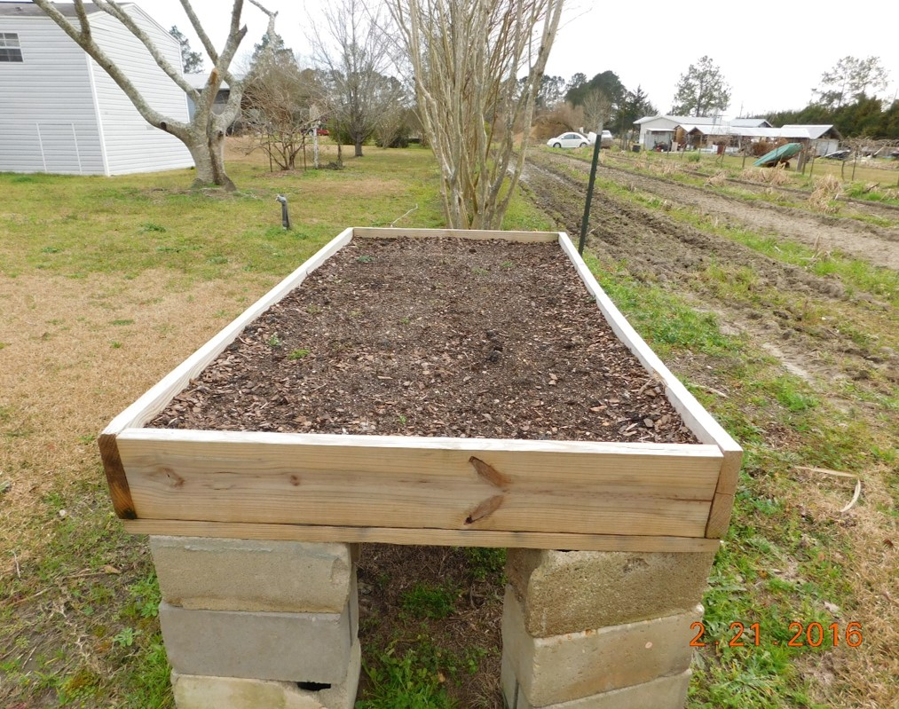 readying your raised beds for northwest florida u2019s best gardening season