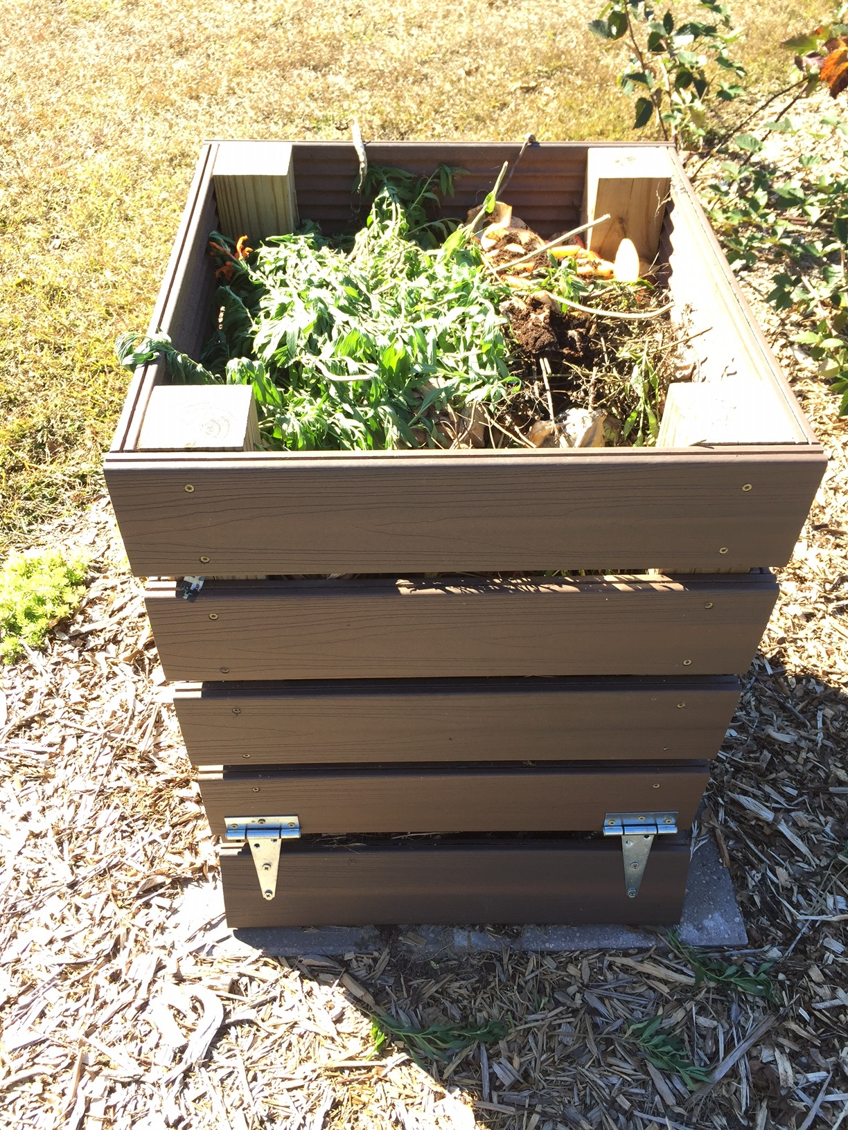 Composting–A Great way to Start off the New Year