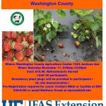 Growing Winter Strawberries Workshop