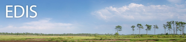 Improve Your Life with Panhandle E-Extension Newsletters and UF/IFAS EDIS Resources