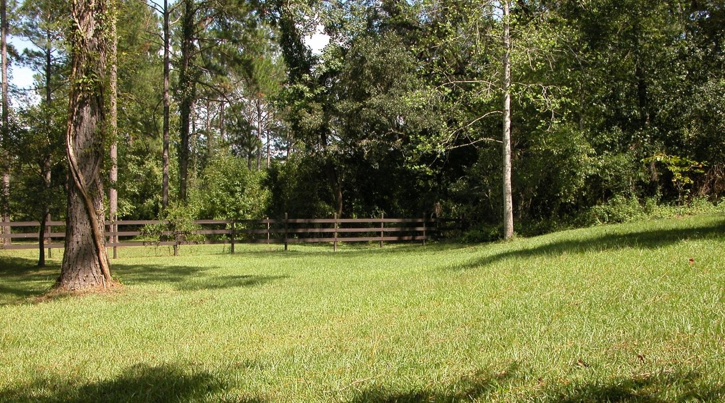 Winterizer for North Florida Lawns?